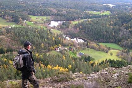 utsikt fra dalfjellet