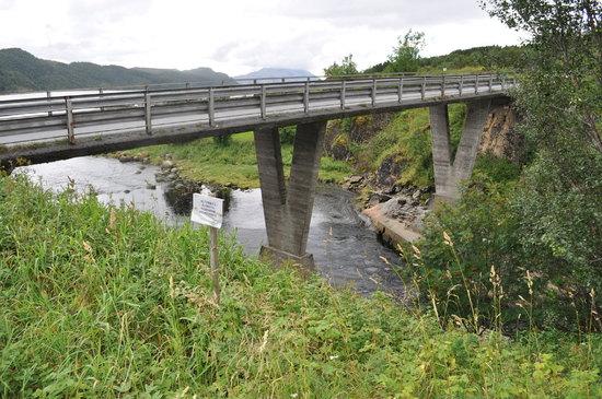 Leirfjord (11)