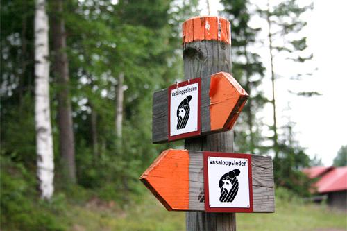 Vasaloppsleden i sommerdrakt. Foto: Geir Nilsen/Langrenn.com.