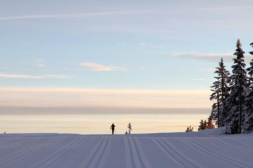Nydelige forhold for Romjulsrennet Sjusjøen i forkant av at startskuddet smalt ved lunsjtid mandag. Foto: Lars Erik Almo.