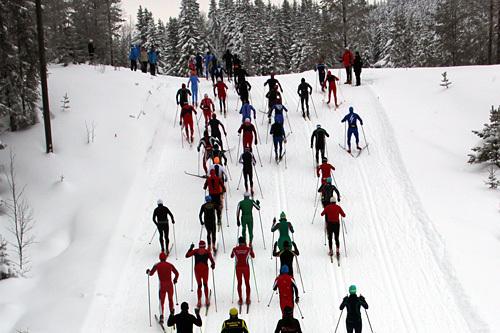 Fra starten i Stenfjellrunden 2014. Foto: Arrangør.