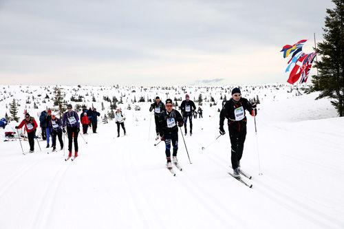 Deltakere i FredagsBirken 2014 på vei mellom Rena og Lillehammer. Foto: Geir Olsen/Birken.