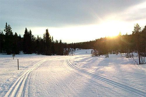 Fra løypa til Knarren Rundt i uke 15 2014. Arrangørfoto.