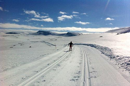 I forkant av Fossavatn Ski Marathon er det idylliske forhold på Island. Foto: Petter Soleng Skinstad.