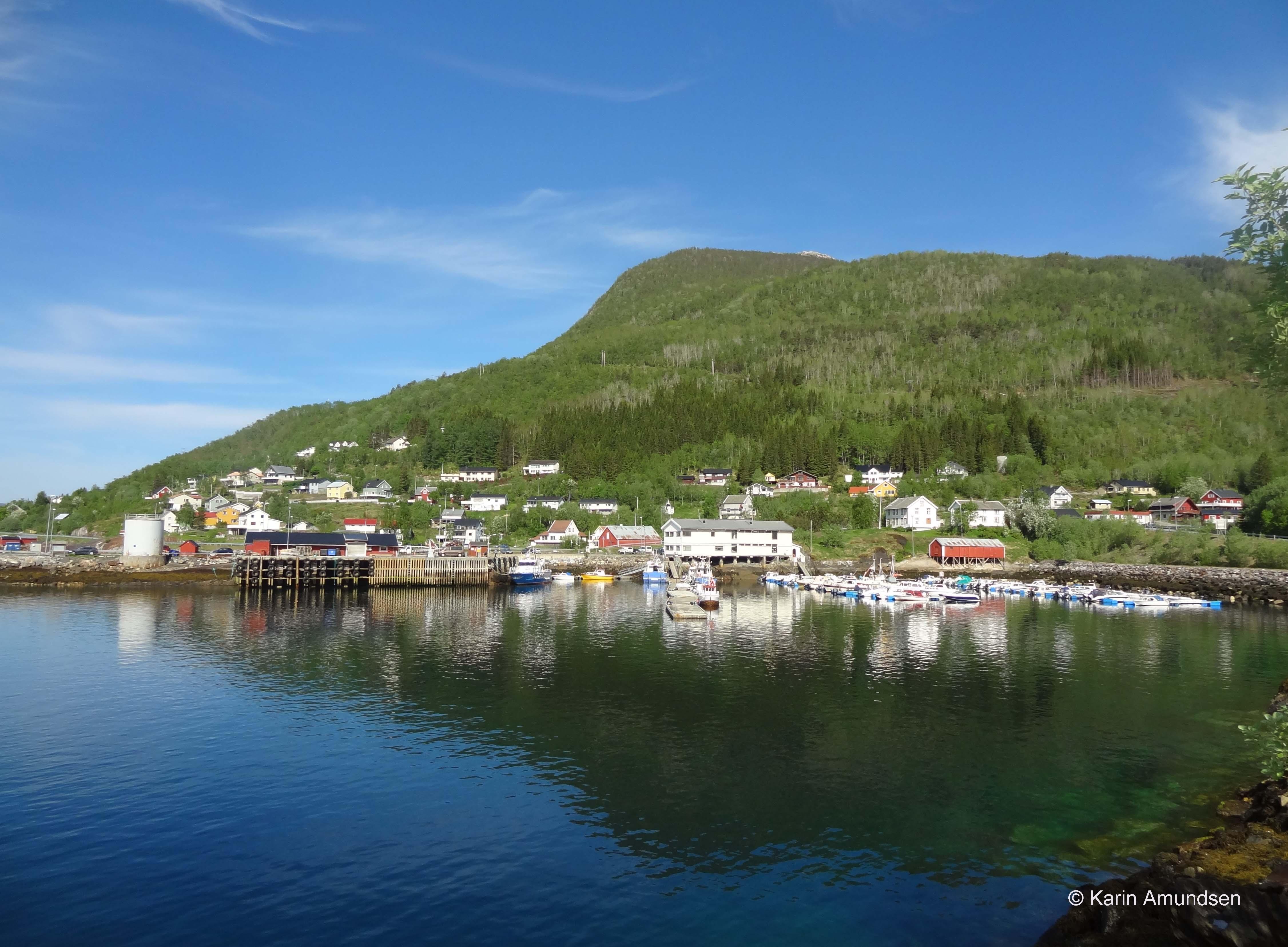 52 Karin Irene Amundsen.jpg