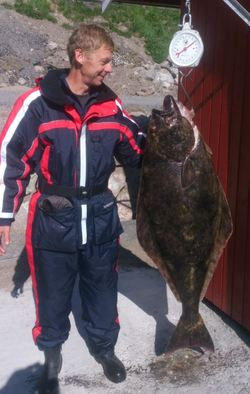 Sverker Sundås, kveite 33kg