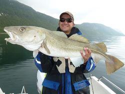 Alexander Schleifer,cod 10kg