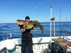 Stuartplewa cod 30kg