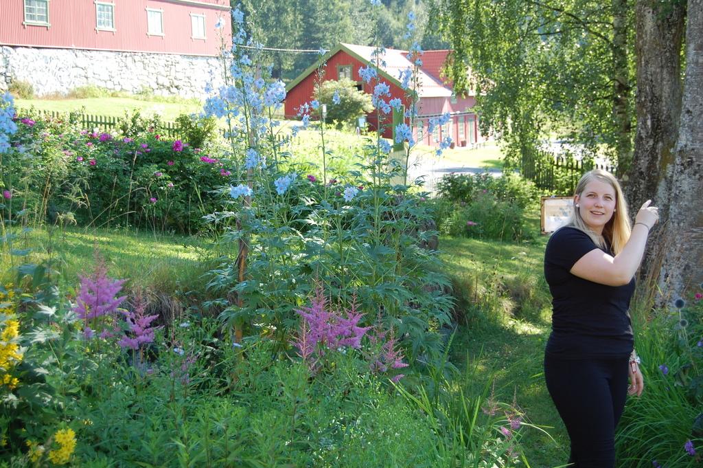 Mange Og Varierte Aktiviteter I Gausdal I Sommer Gausdal Kommune