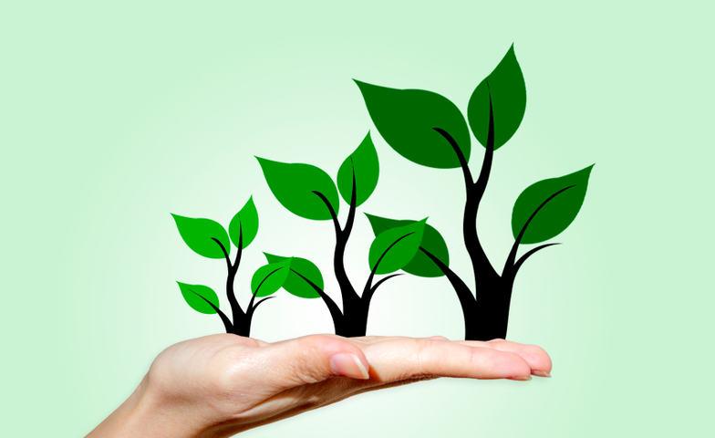 Illustrasjonsfoto omsorg og vekst
