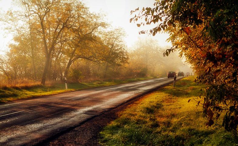 Illustrasjonsbilde vei og trafikk