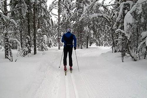 Her ser vi Erlend Olsen på vei opp mot første matstasjon ved Korsmyrkoja to uker før rennet 2015. Arrangørfoto.