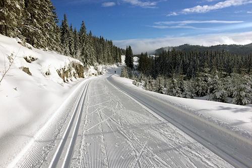Fra løypene til Holmenkollmarsjen. Bildet er tatt 29. januar 2015 i stigningen opp mot Søndre Heggeli. Foto: Kjetil Hagen.