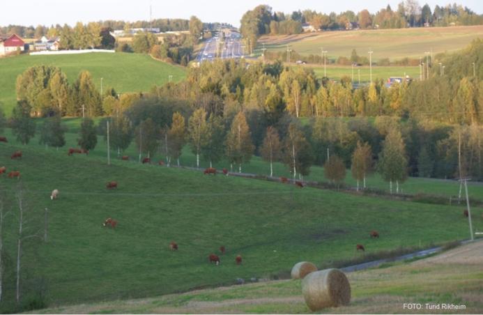 kommuneplan 2015-2027 illustrasjonsbilde tatt av Turid Rikheim