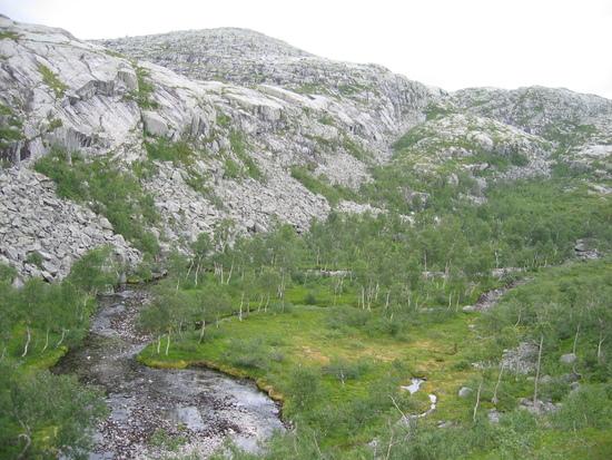 Tosbotn-Mosjøen 064