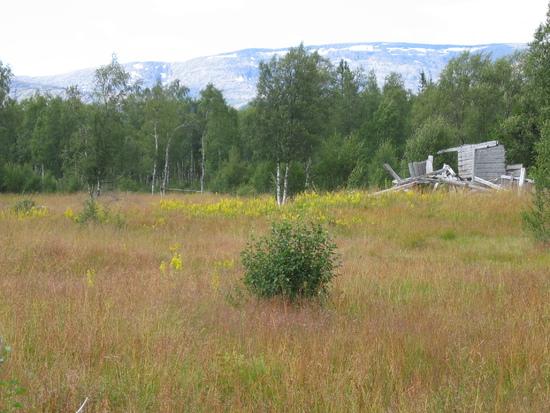 Tosbotn-Mosjøen 047