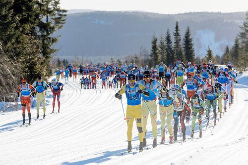 I langløpssirkuset Visma Ski Classics, som Birkebeinerrennet er en del av, er staking den dominerende teknikken. Foto: Magnus Östh/Swix Ski Classics.