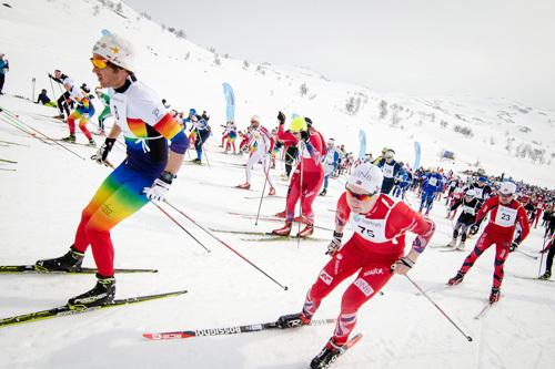 Starten i Haukelirennet 2015. Foto: Magnus Tjønn.