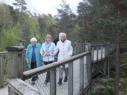 Hagestuå på tur til Dyreparken Kristiansand