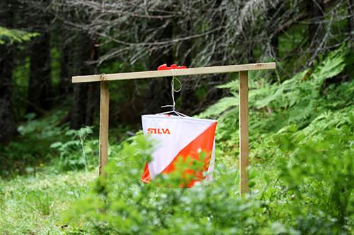 Illustrasjonsbilde fra sist VM i orientering var i Norge, i 2010 i Trondheim. Foto: Geir Nilsen/Langrenn.com.