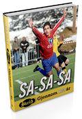 sasasa3d kopier