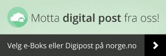 Illustrasjon digital post.png
