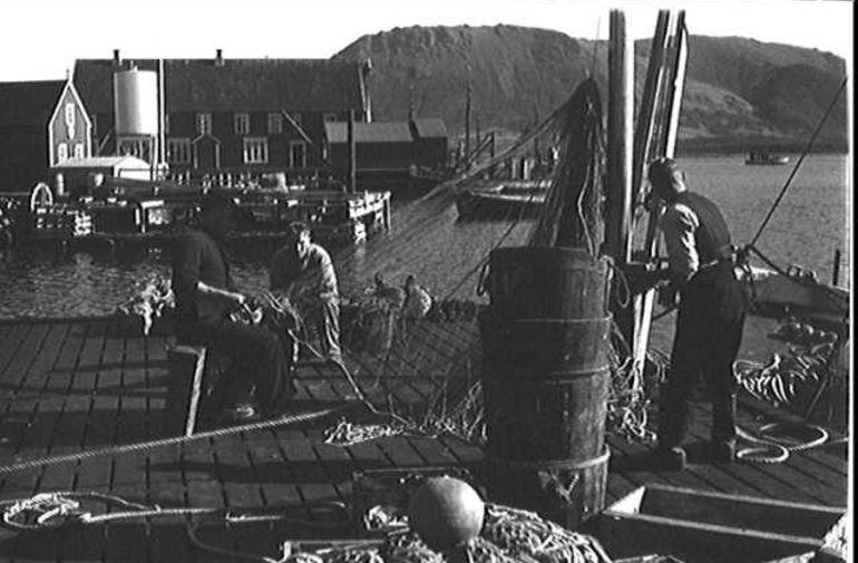 Myre havn 1950