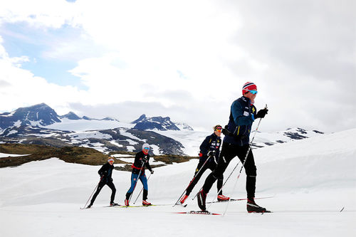 Deler av Bækkelagets stadig voksende gruppe av satsende ungdommer, juniorer og seniorer under deres samling på Sognefjellet. Foto: Eirik Lund Røer.