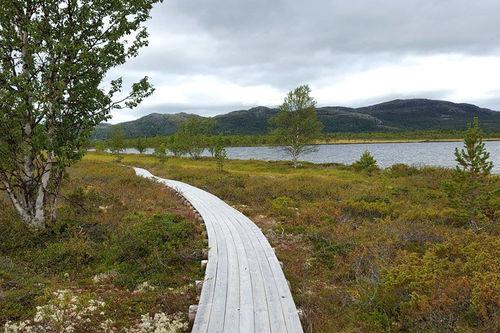 Furusjøen Rundt-løpet. Foto: Furusjøen Rundt.