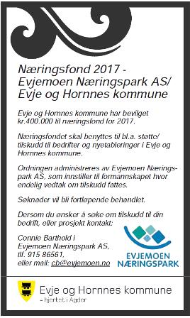 Næringsfond2017.png