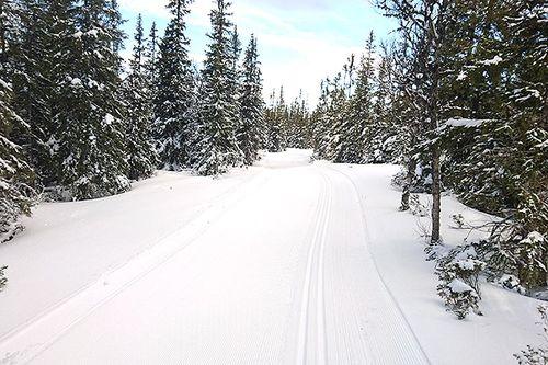 Fine forhold foran Årefjällsloppet 2017. Arrangørfoto.