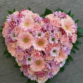 Hjerte roser og gerbra