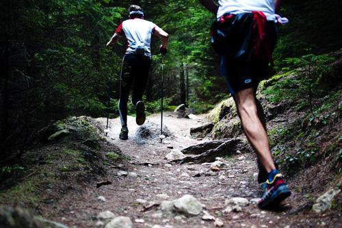 Lange rolige løpeturer i skog og fjell bygger grunnlag for å tåle de harde øktene. Foto: Creative Commons/Pixabay.com.