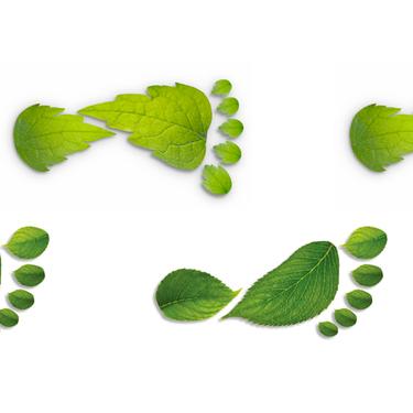 flere fotavtrykk laget av blader