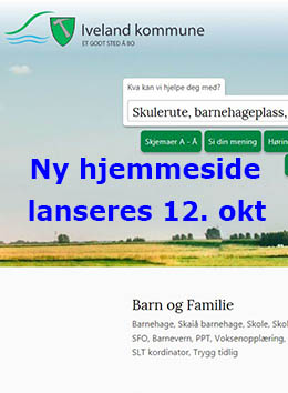 Ny hjemmeside  2017