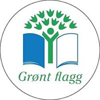 Grønt flagg