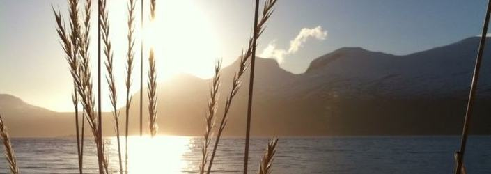 Valnesfjord 1