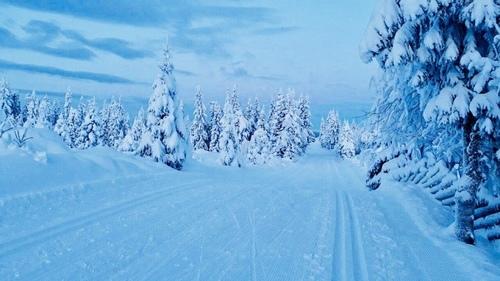 Skispor_500x281