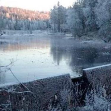 Bilde av dammen Abbortjern