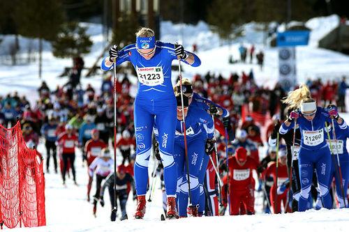 Ingalåmi. Foto: Geir Olsen/Birken AS.