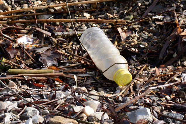 plastic-bottle-1184735_1920