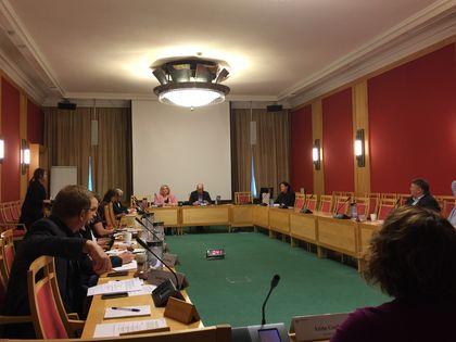 Plenum høring i Stortinget (Foto: FUG)
