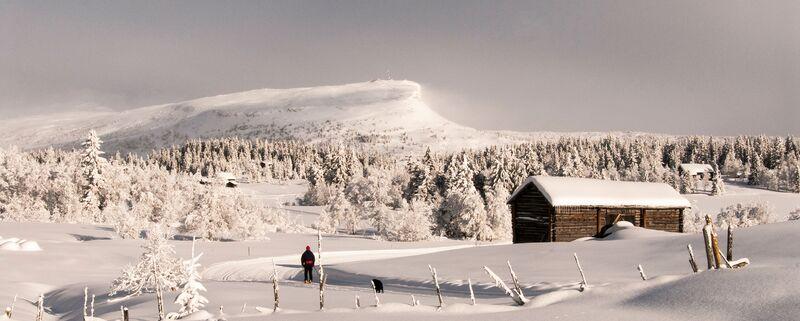 Vinterbilde Skeikampen