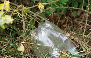 plastic-bottle-2781388_1920