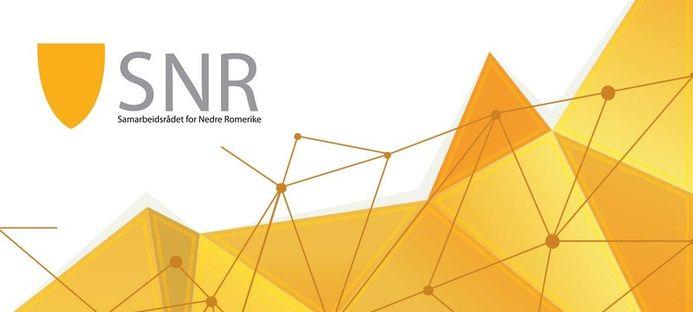 Logo SNR