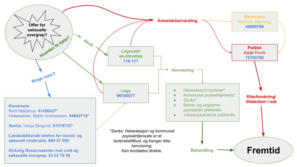 Hvordan få hjelp til behandling etter seksuelle overgrep - skjematisk oversikt - forenklet-2.png