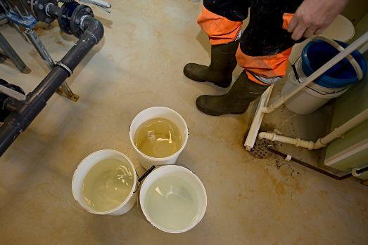 Bøtter fylt med vann fra et vannverk