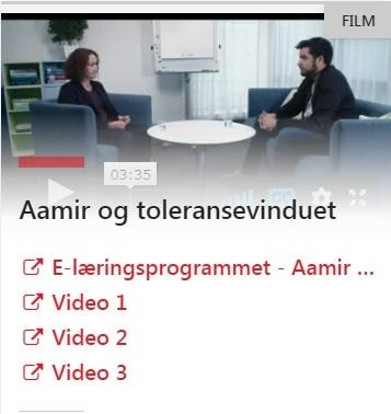 Aamir og toleransevinduet.jpg