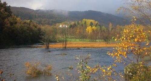Høst Gunvald