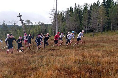 – Utøverne digger å løpe langtur i myr, sier Sandra Alise Lyngstad Hennum, trener for skiløperne på NTG Lillehammer. Foto: NTG Lillehammer.